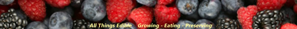 Fresh To You Produce Banner