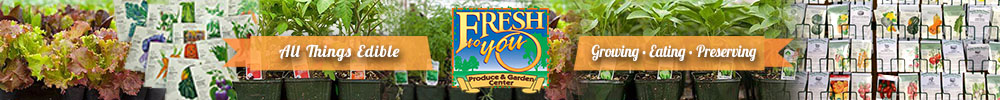 Seedlings from Fresh To You Produce